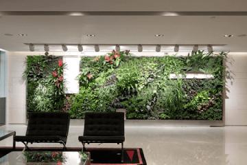 העיצוביות המיוחדת של קירות ירוקים